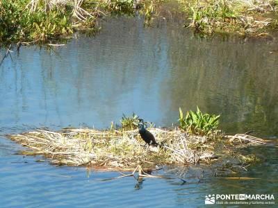 Cañón Río Aulencia-Embalse Valmenor; actividades para grupos madrid fotos de senderos actividades